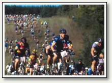 Fat Tire Bicycle Race