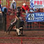 image of bull riding